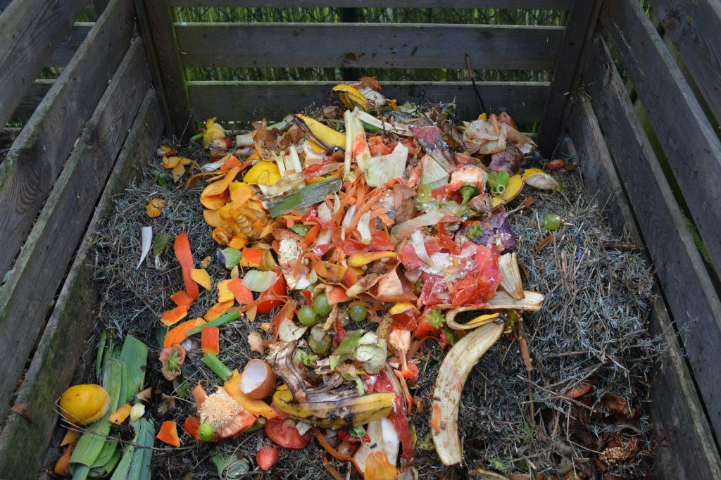 Compost Bin With Food Waste | Reusaboo